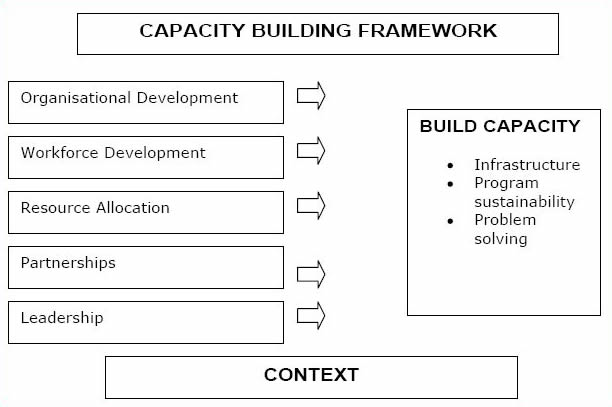 New South Wales Health Department Capacity Building Framework