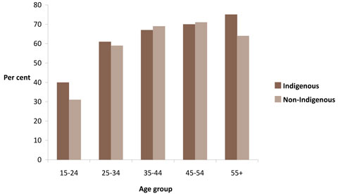 Percentages of overweight and obese males, by Indigenous status and age group, Australia, 2004-2005